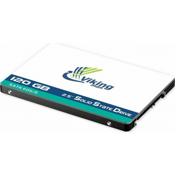 حافظه اس اس دی وایکینگ من SSD Vikingman V611 Platinium ظرفیت 120 گیگابایت
